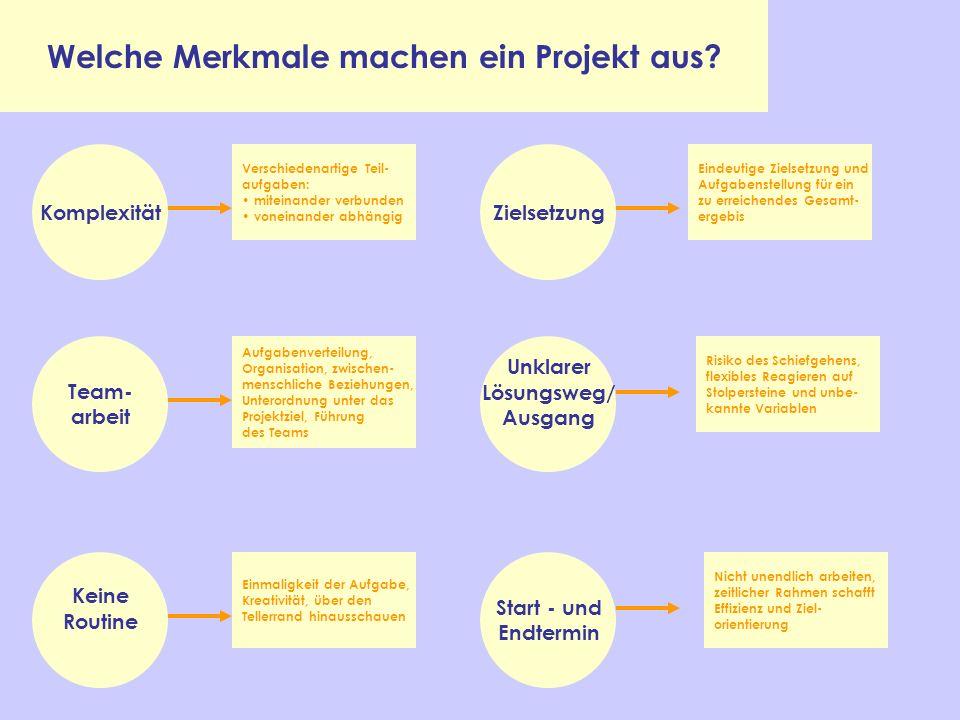 Welche Merkmale machen ein Projekt aus