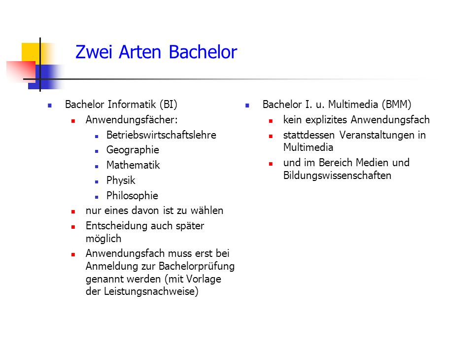 Zwei Arten Bachelor Bachelor Informatik (BI) Anwendungsfächer: