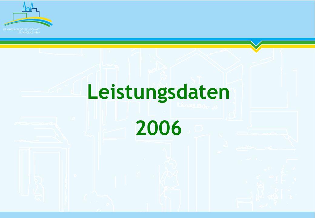 Leistungsdaten 2006