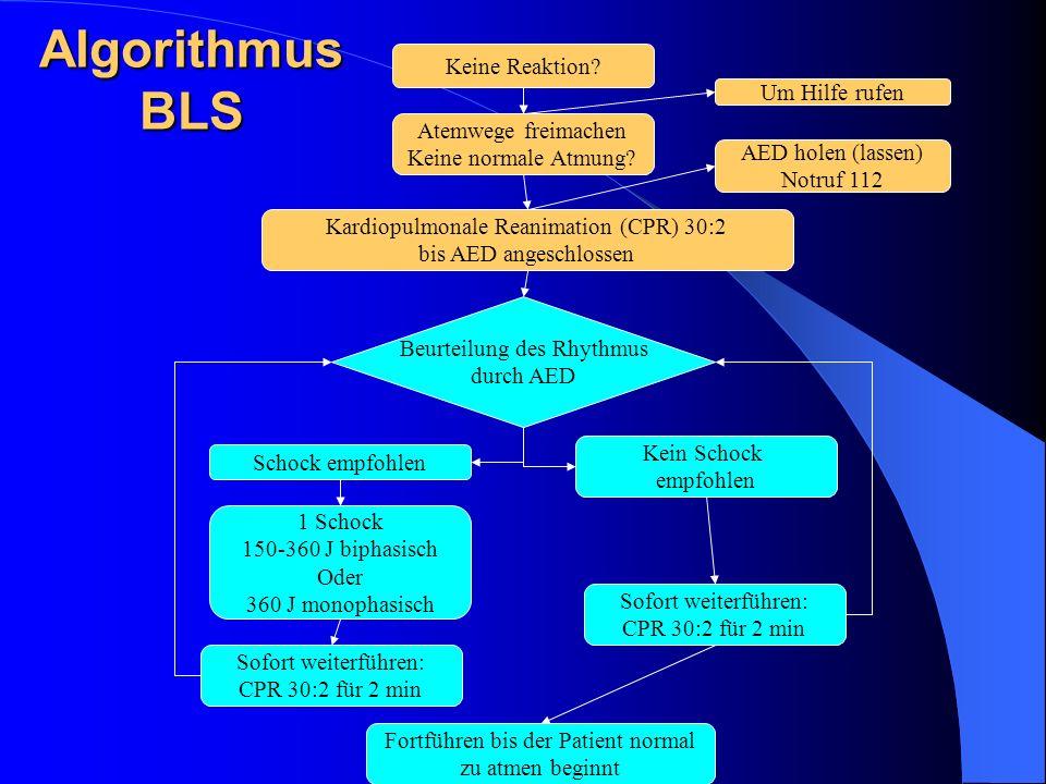 Algorithmus BLS Keine Reaktion Um Hilfe rufen Atemwege freimachen