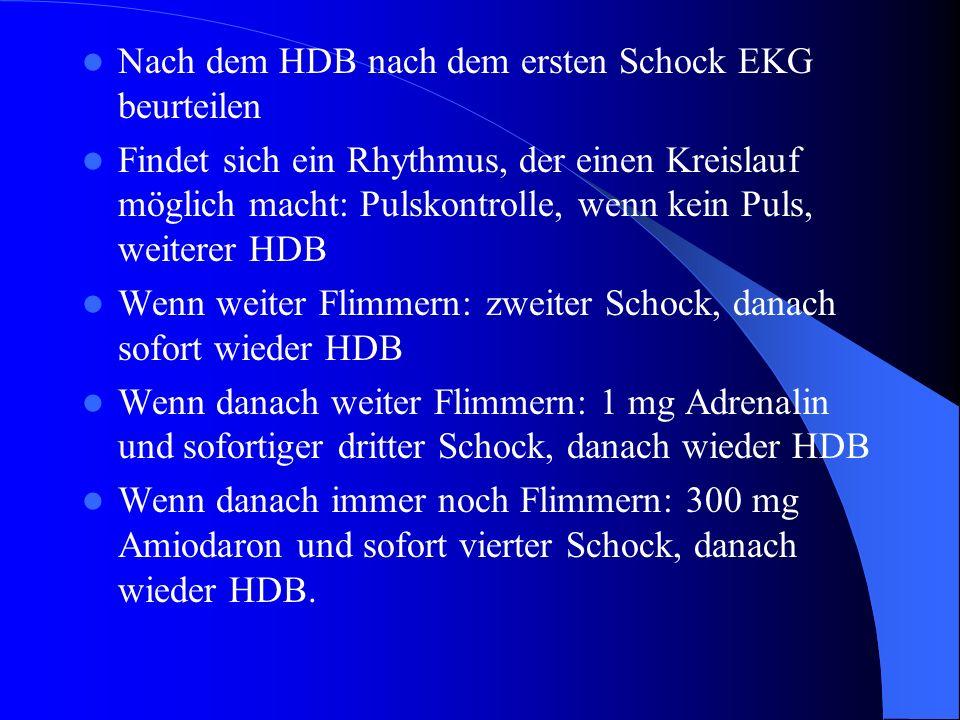 Nach dem HDB nach dem ersten Schock EKG beurteilen