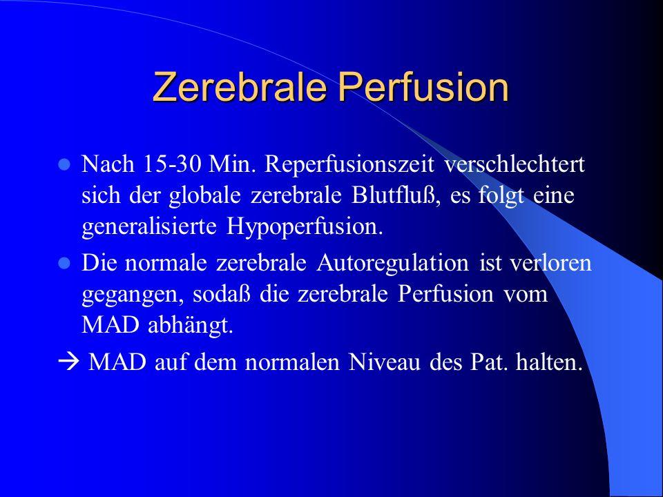 Zerebrale Perfusion Nach 15-30 Min. Reperfusionszeit verschlechtert sich der globale zerebrale Blutfluß, es folgt eine generalisierte Hypoperfusion.
