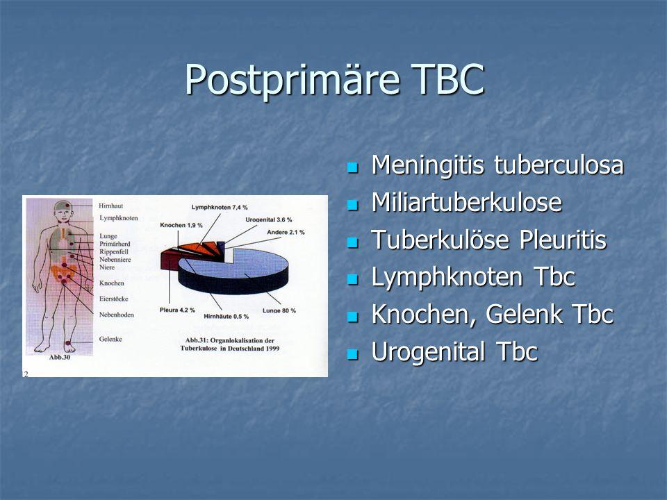 Postprimäre TBC Meningitis tuberculosa Miliartuberkulose