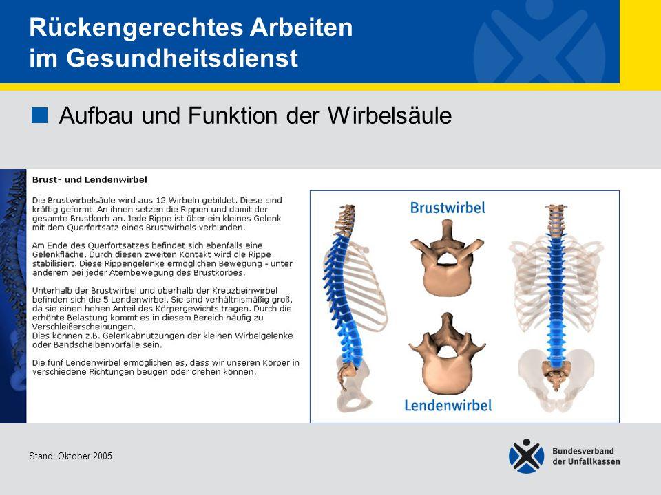 Fantastisch Insektenbein Anatomie Zeitgenössisch - Menschliche ...