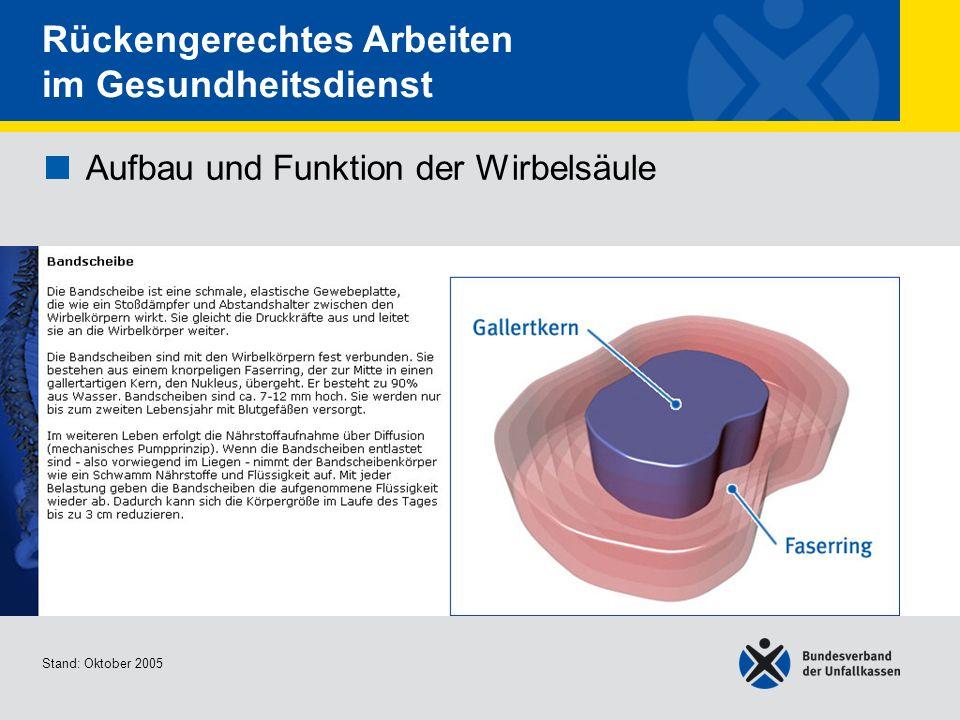 Aufbau und Funktion der Wirbelsäule • Bandscheibe