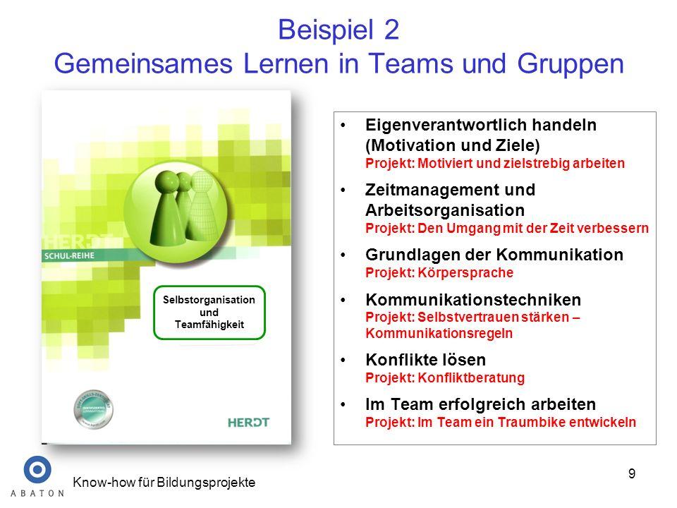 Beispiel 2 Gemeinsames Lernen in Teams und Gruppen