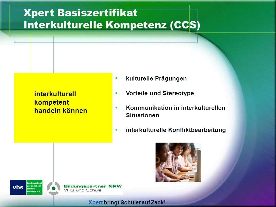Xpert Basiszertifikat Interkulturelle Kompetenz (CCS)