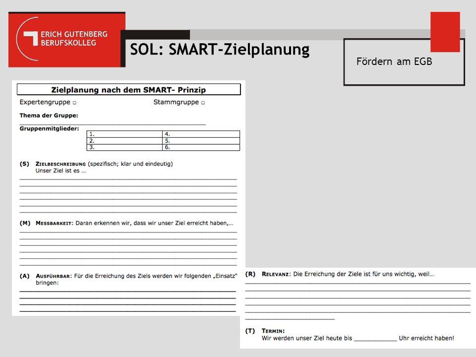 SOL: SMART-Zielplanung