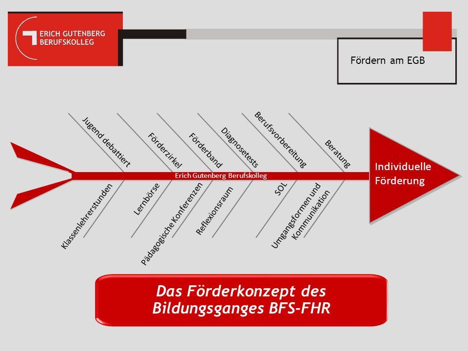 Das Förderkonzept des Bildungsganges BFS-FHR