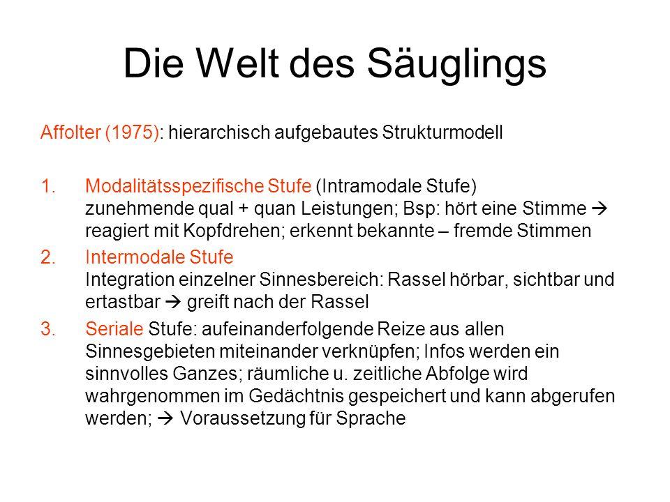 Die Welt des Säuglings Affolter (1975): hierarchisch aufgebautes Strukturmodell.