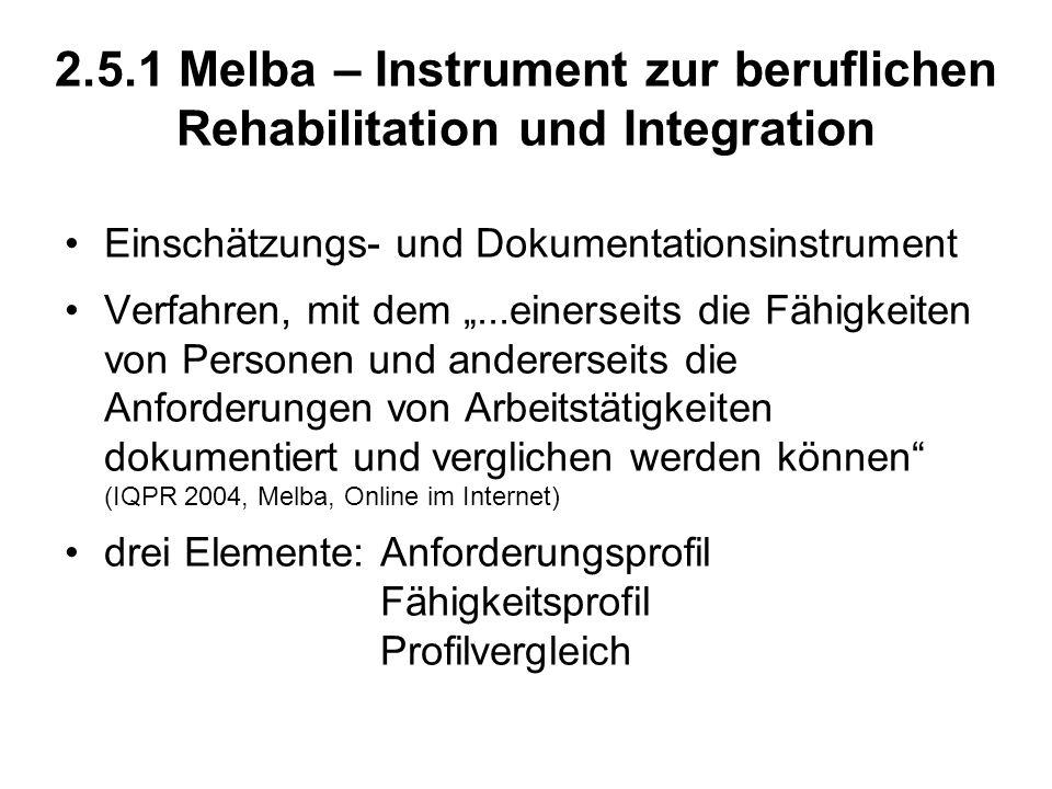 2.5.1 Melba – Instrument zur beruflichen Rehabilitation und Integration