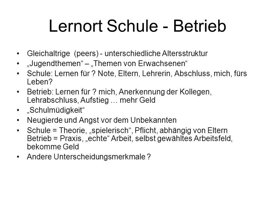 Lernort Schule - Betrieb