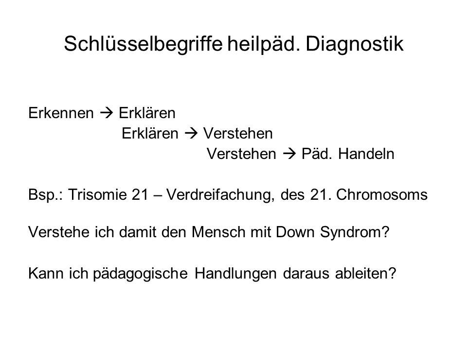 Schlüsselbegriffe heilpäd. Diagnostik