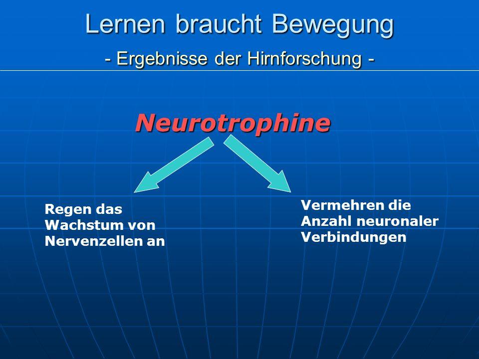 Lernen braucht Bewegung - Ergebnisse der Hirnforschung -