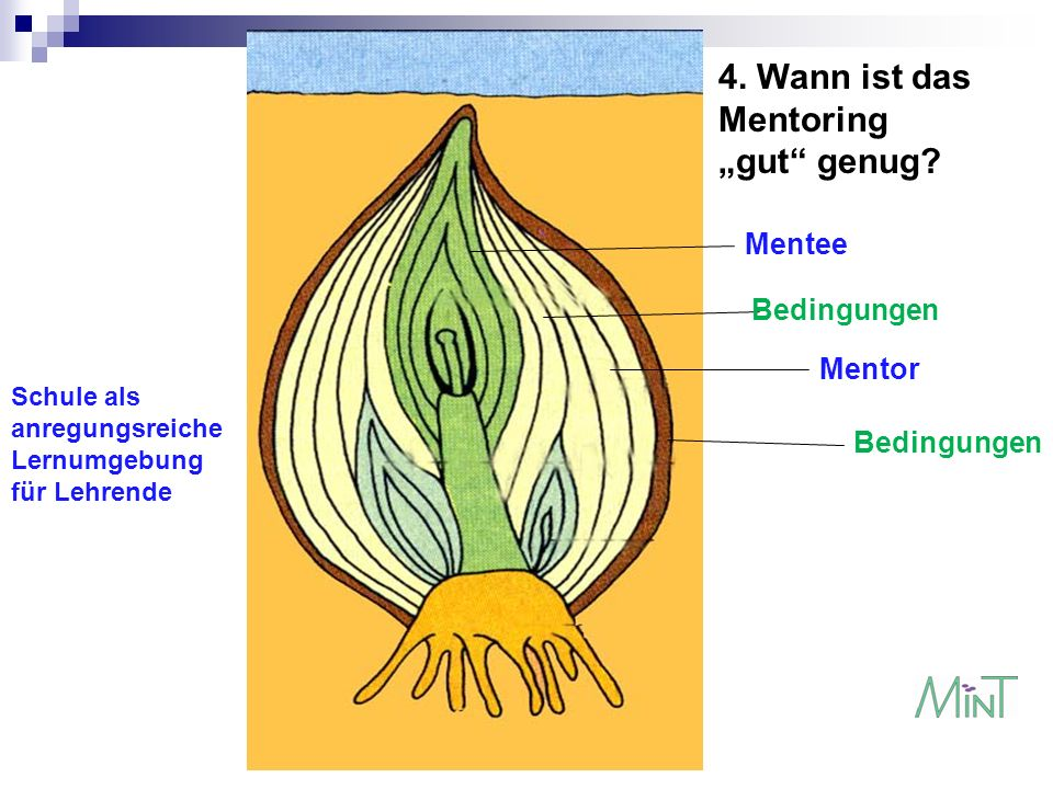 "4. Wann ist das Mentoring ""gut genug Mentee Bedingungen Mentor"