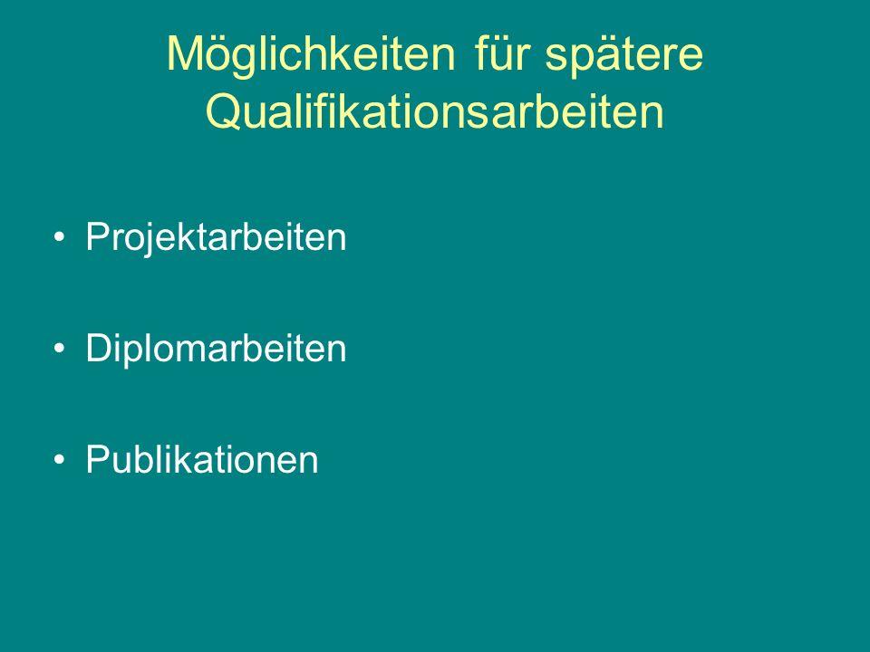 Möglichkeiten für spätere Qualifikationsarbeiten