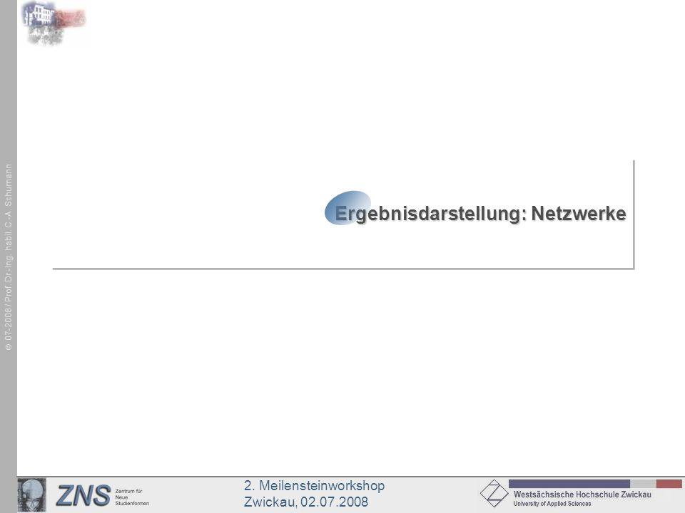 Ergebnisdarstellung: Netzwerke