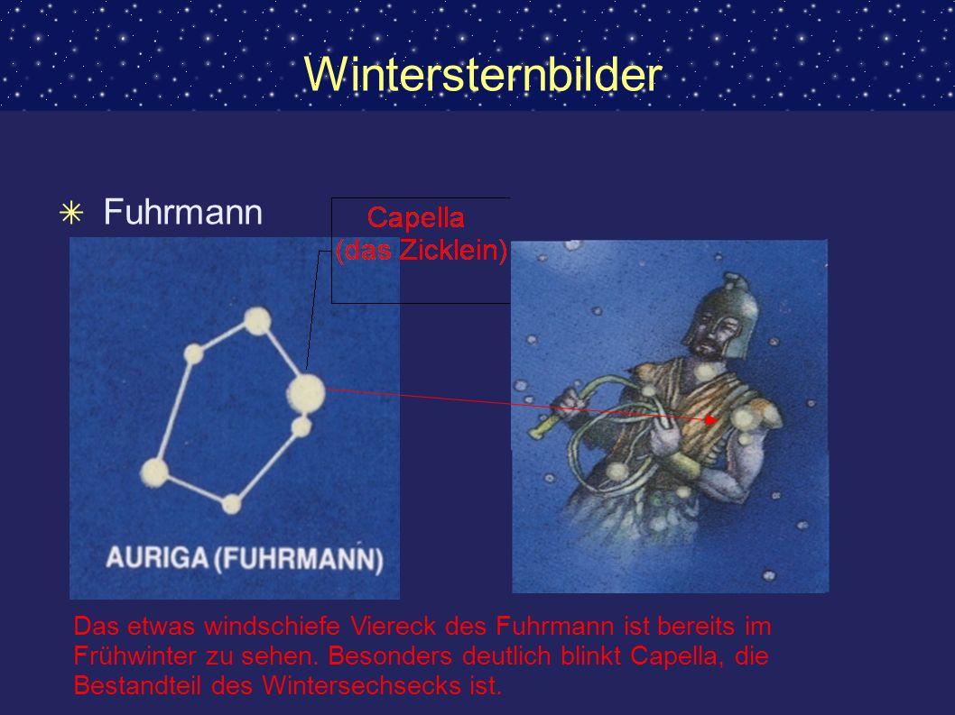 Wintersternbilder Fuhrmann