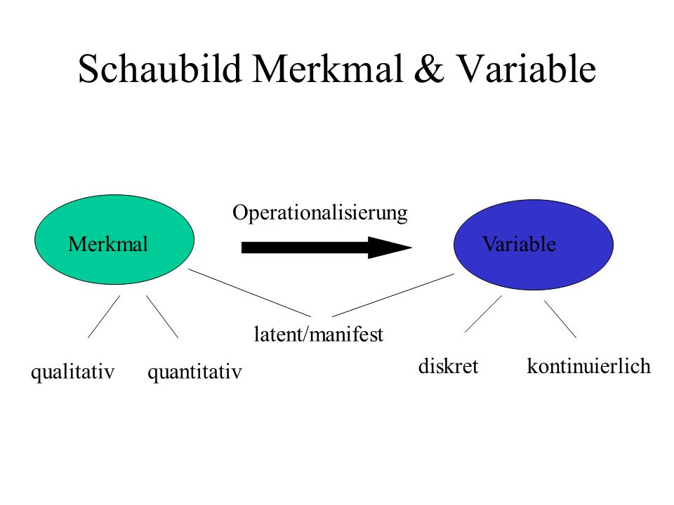 Schaubild Merkmal & Variable