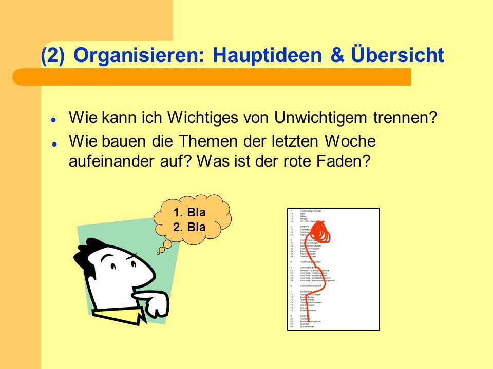 Organisieren: Hauptideen & Übersicht