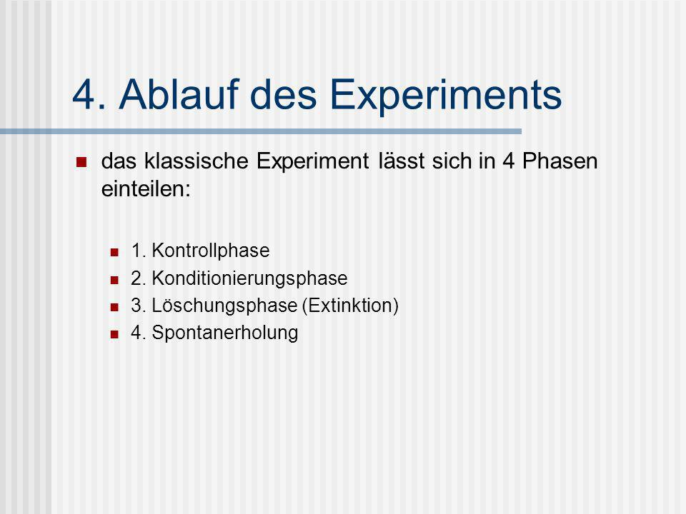 4. Ablauf des Experiments