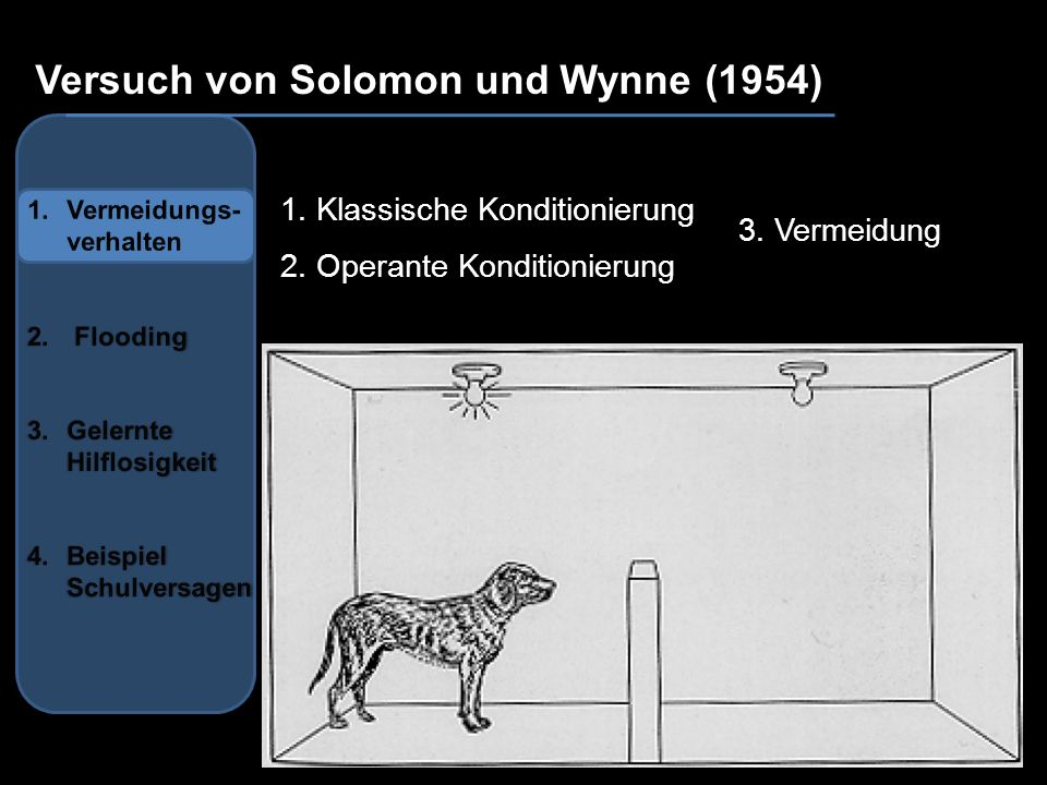 au Versuch von Solomon und Wynne (1954) 1. Klassische Konditionierung