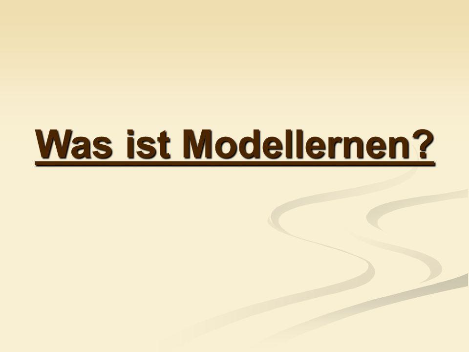 Was ist Modellernen