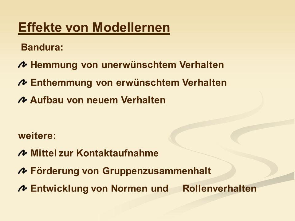 Effekte von Modellernen