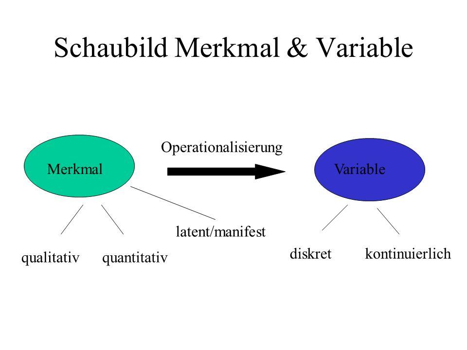 Schaubild Merkmal & Variable