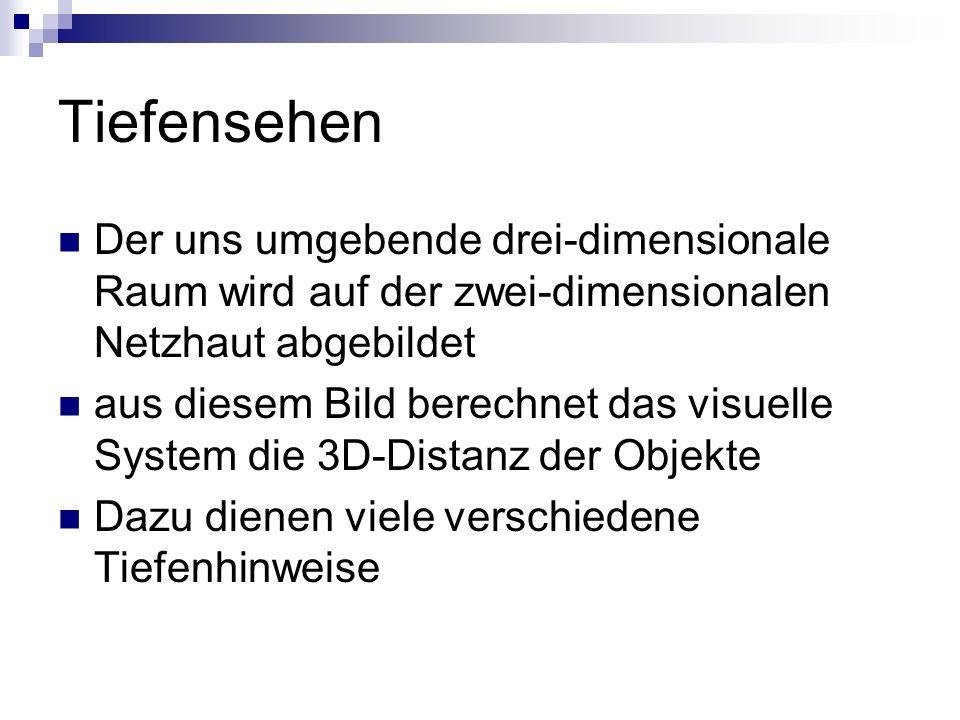TiefensehenDer uns umgebende drei-dimensionale Raum wird auf der zwei-dimensionalen Netzhaut abgebildet.