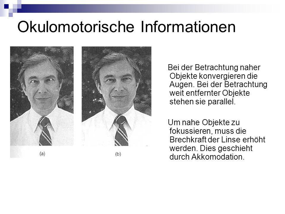 Okulomotorische Informationen