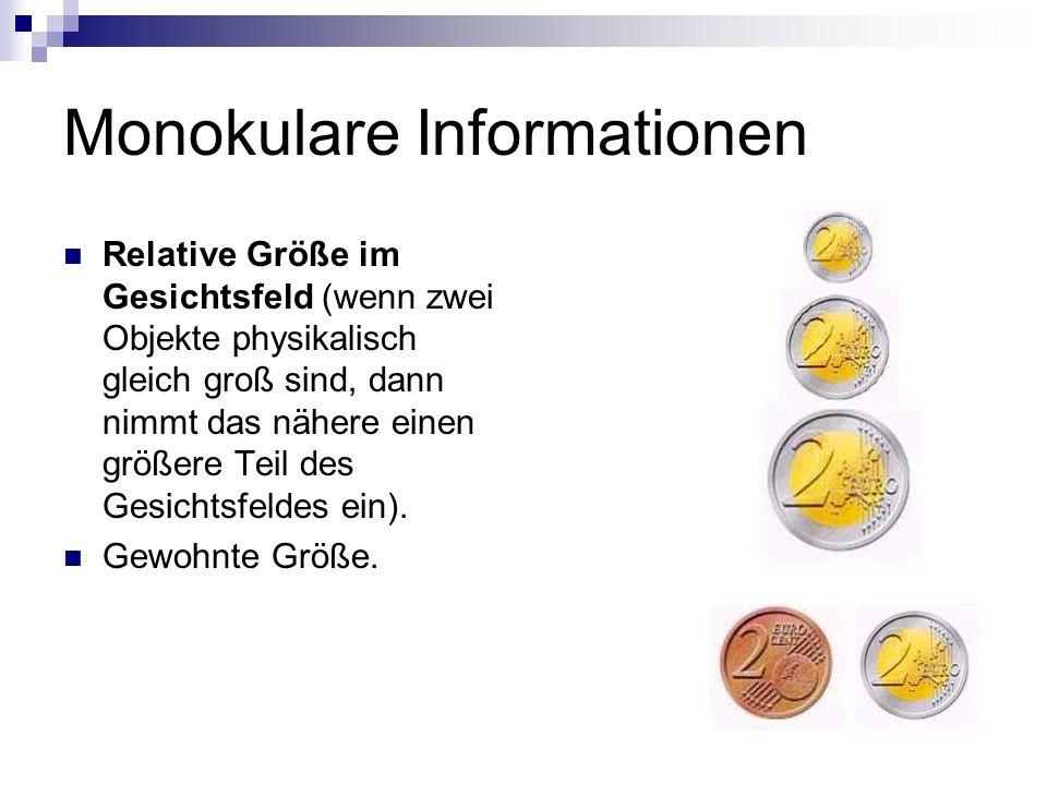Monokulare Informationen