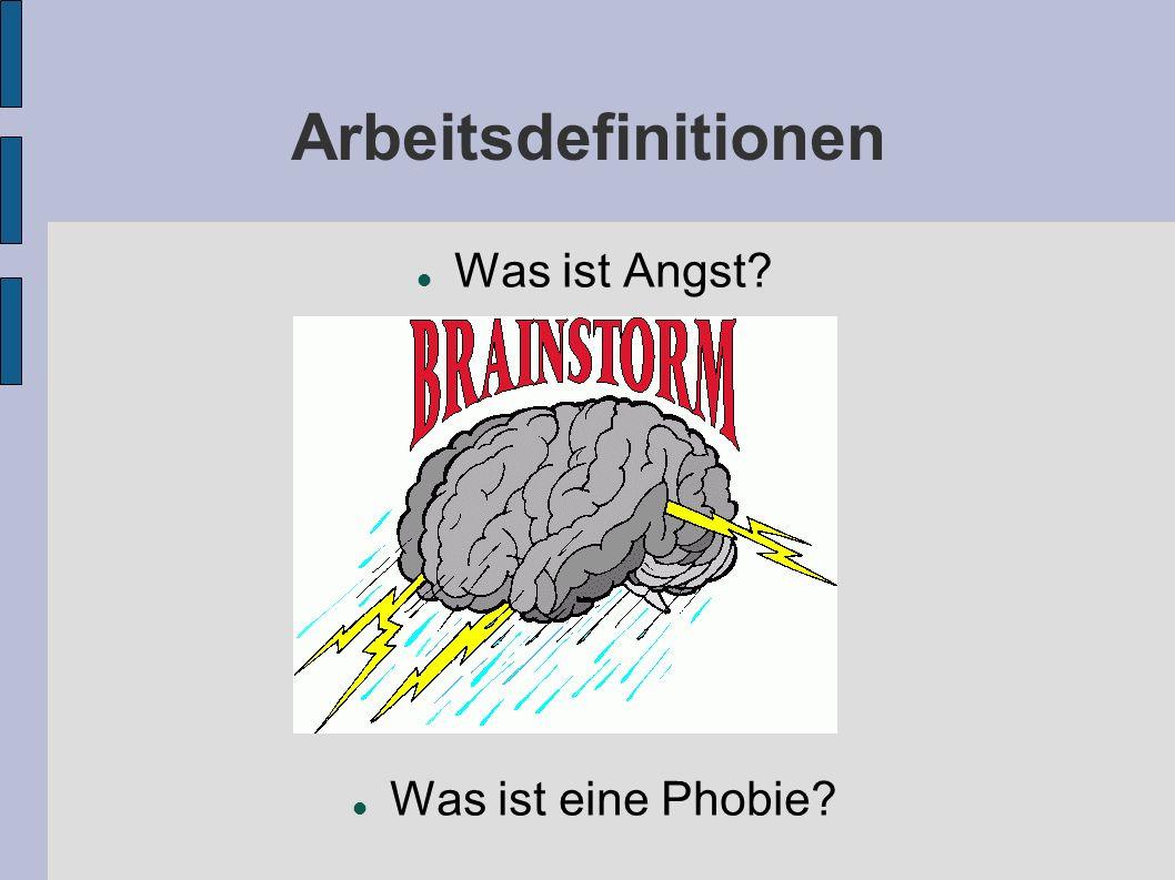 Arbeitsdefinitionen Was ist Angst Was ist eine Phobie Brainstorming