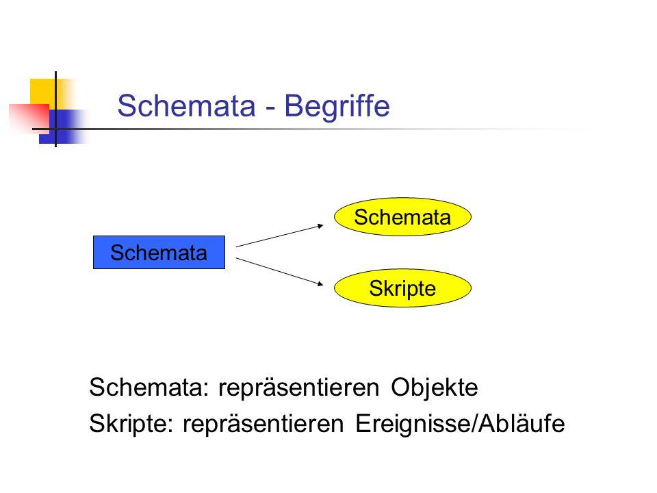 Schemata - Begriffe Schemata: repräsentieren Objekte
