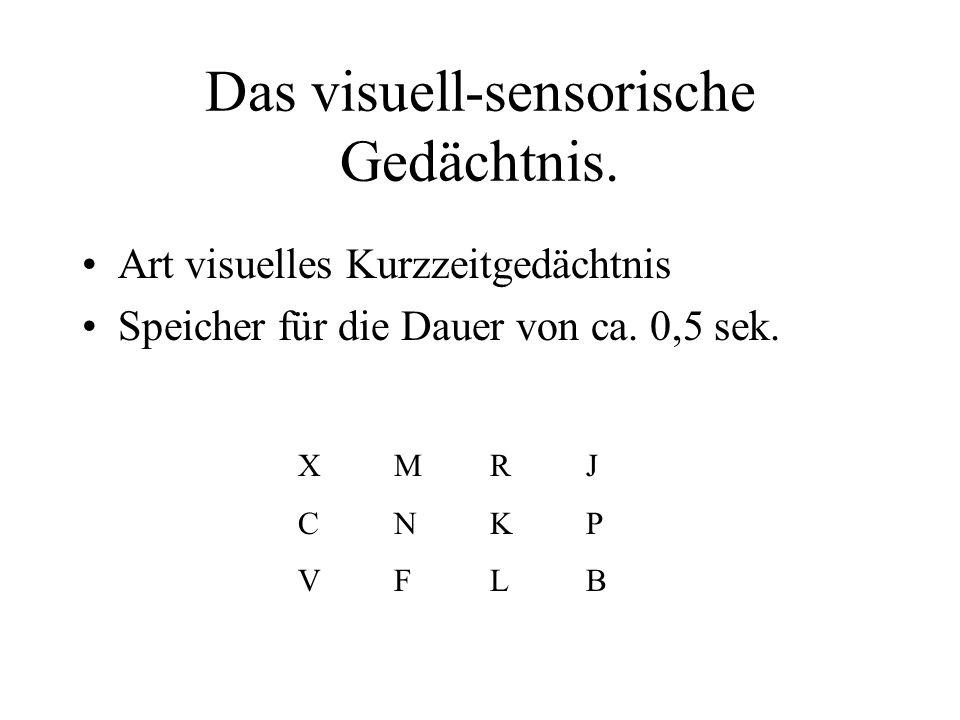 Das visuell-sensorische Gedächtnis.