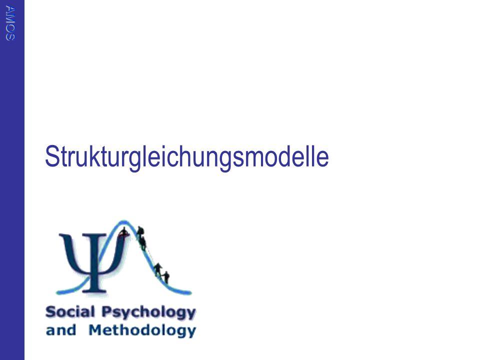 Strukturgleichungsmodelle