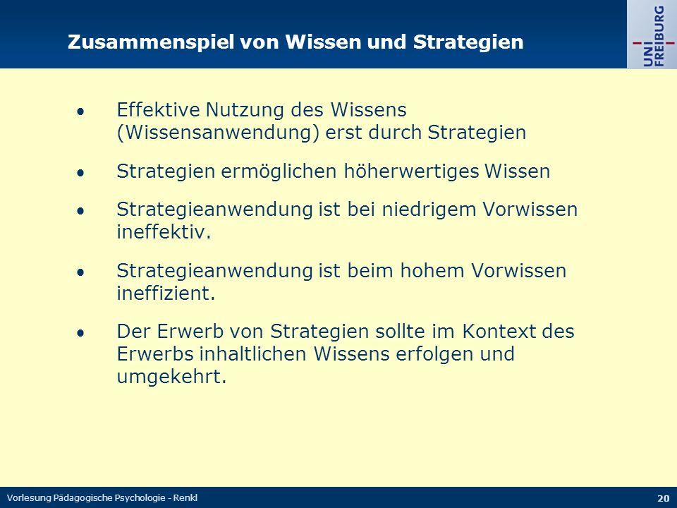 Zusammenspiel von Wissen und Strategien
