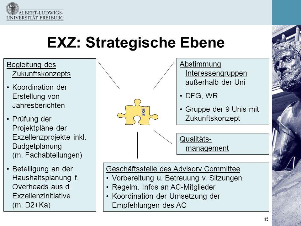 EXZ: Strategische Ebene