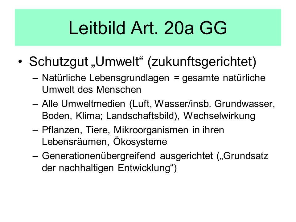 """Leitbild Art. 20a GG Schutzgut """"Umwelt (zukunftsgerichtet)"""