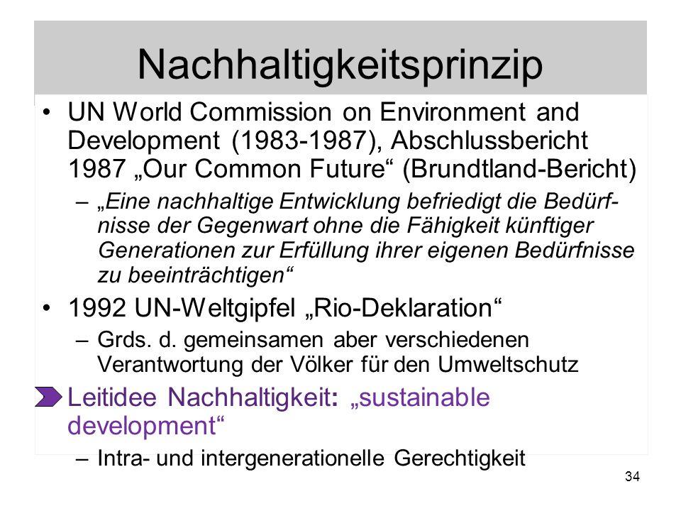 Nachhaltigkeitsprinzip