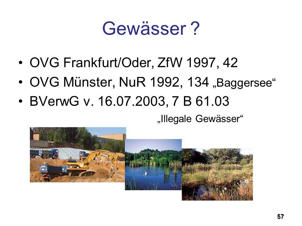 Gewässer OVG Frankfurt/Oder, ZfW 1997, 42