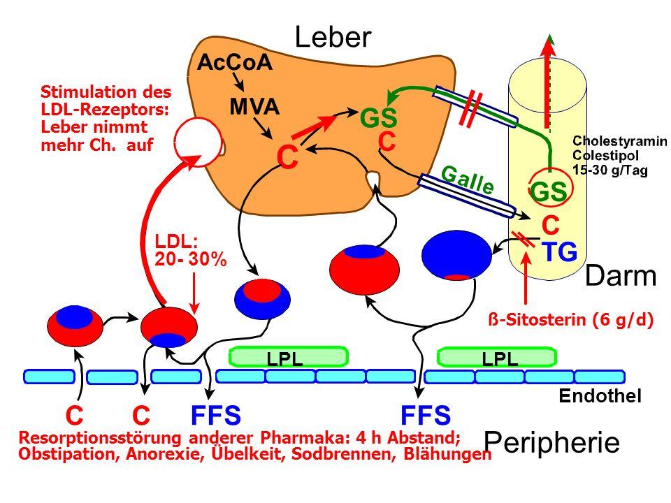 C Leber Darm Peripherie GS C GS C TG C C FFS FFS AcCoA MVA LDL: