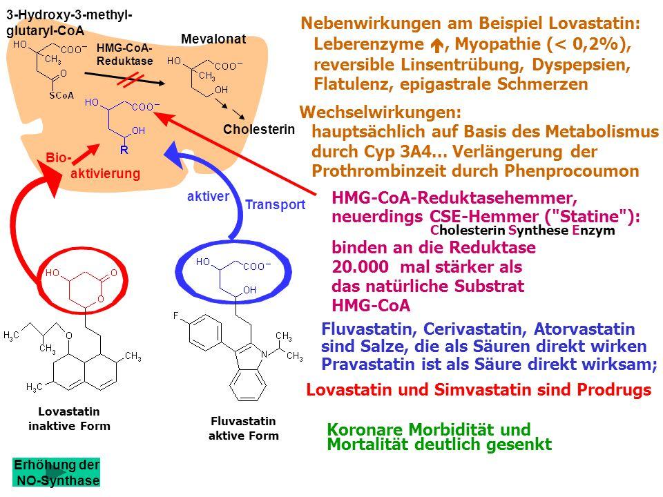 Nebenwirkungen am Beispiel Lovastatin: