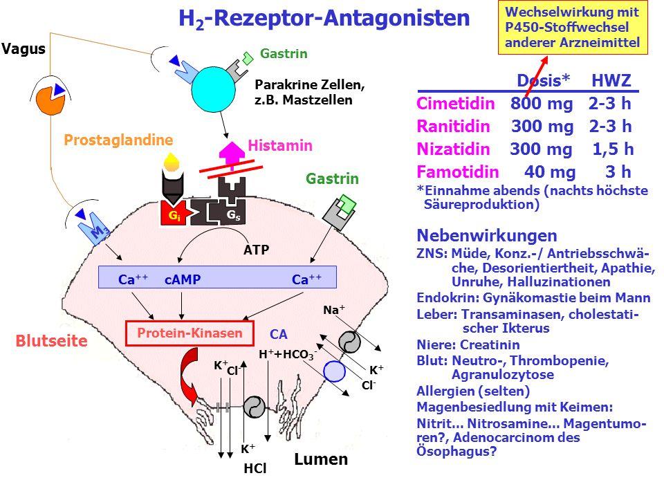 H2-Rezeptor-Antagonisten
