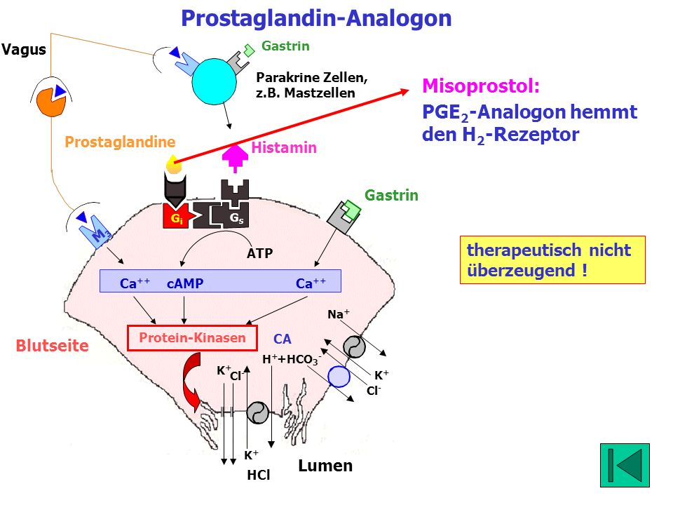 Prostaglandin-Analogon