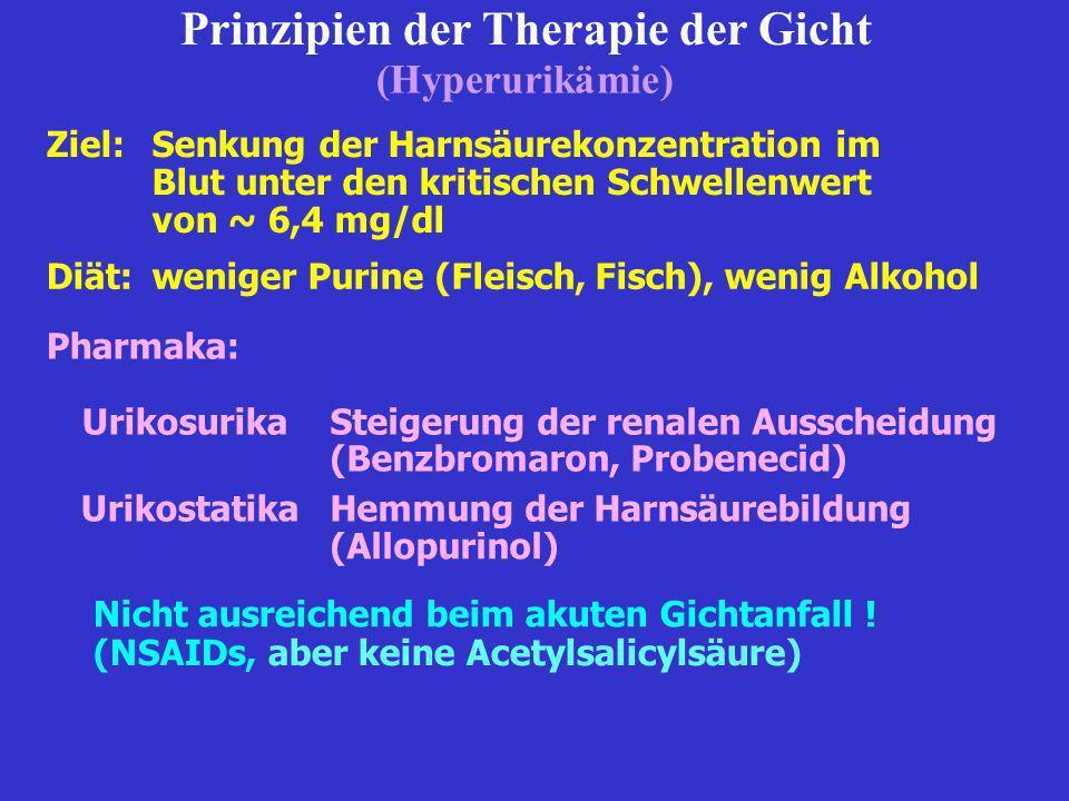 Prinzipien der Therapie der Gicht