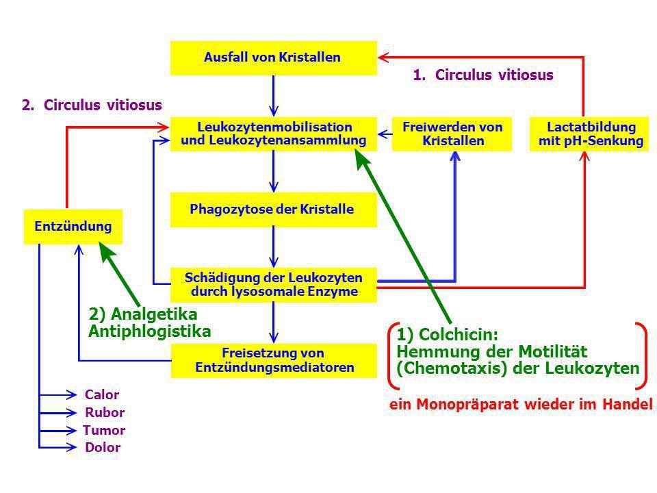 (Chemotaxis) der Leukozyten