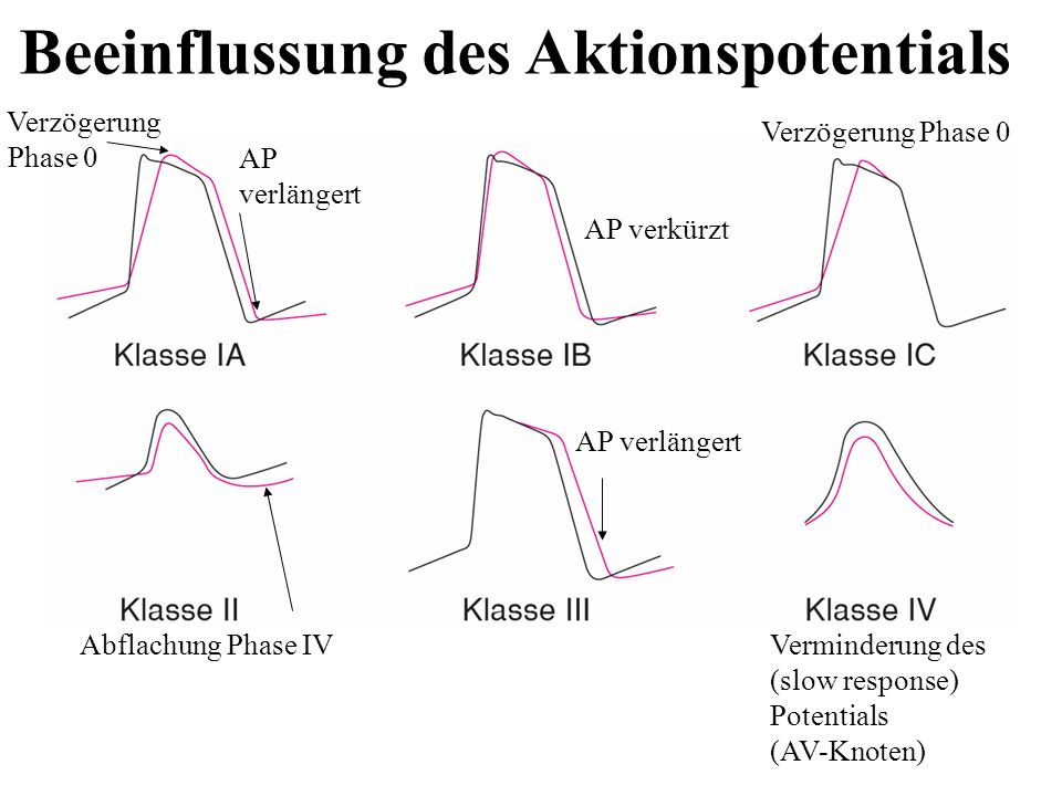 Beeinflussung des Aktionspotentials