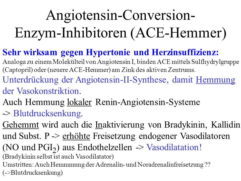 Angiotensin-Conversion- Enzym-Inhibitoren (ACE-Hemmer)