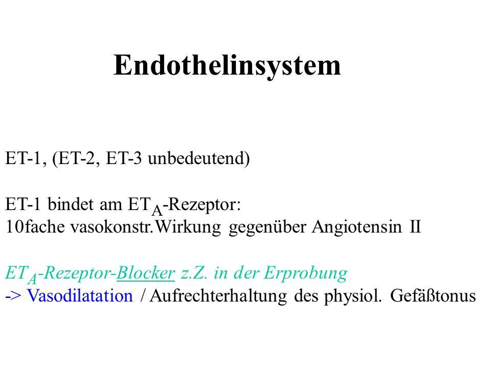 Endothelinsystem ET-1, (ET-2, ET-3 unbedeutend)
